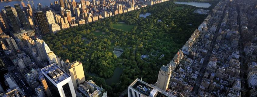 מבט על הסנטרל פארק מלמעלה עם בנייני העיר ניו יורק