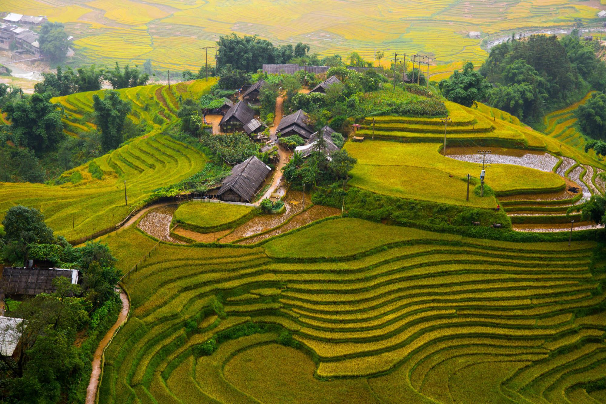 אזור כפרי בויאטנם הנקרא סאפה